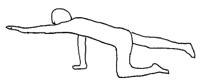 多裂筋の筋トレ