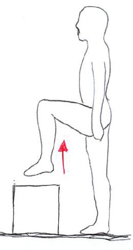 大腰筋の筋トレ