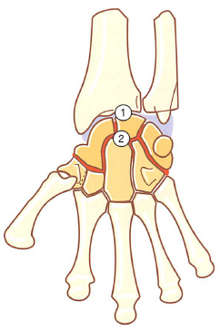 手関節モビライゼーション