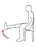 高齢者の膝伸展筋力増強