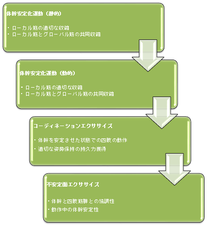 コアマッスルの段階的リハビリ(理学療法)