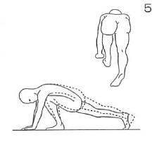 Williams(ウィリアムズ)の腰痛体操5