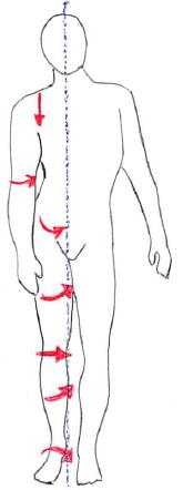 骨盤前傾による下行性運動連鎖
