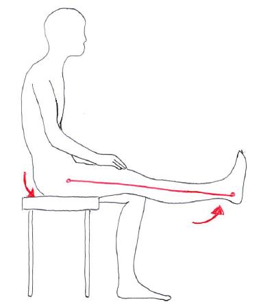 骨盤後傾位での膝伸展