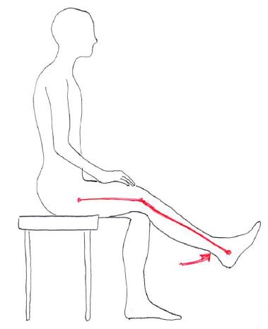 骨盤前傾での膝伸展