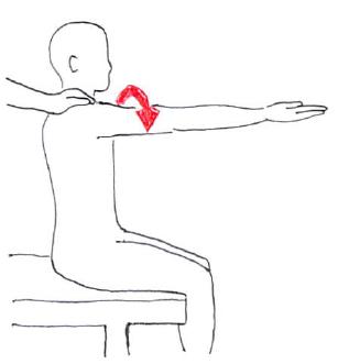MMT 肩関節屈曲(上腕二頭筋による代償)