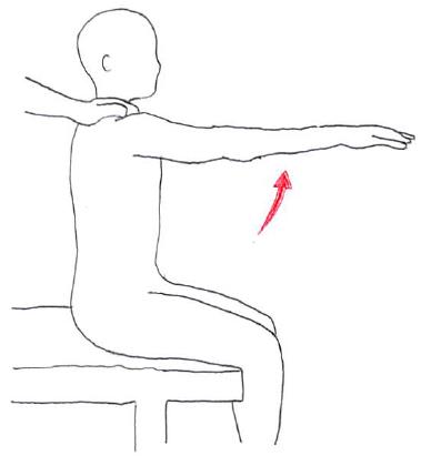 MMT 肩関節屈曲3