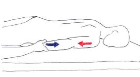 肩伸展 広背筋
