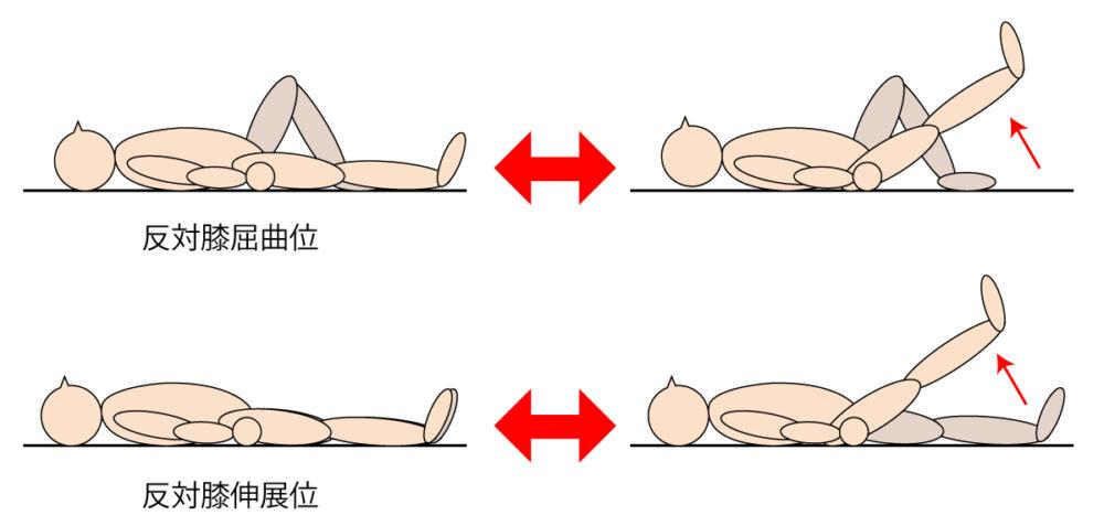 SLR(下肢伸展拳上)運動のメリット・デメリット