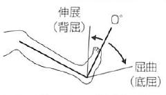 「足関節 背屈」の画像検索結果