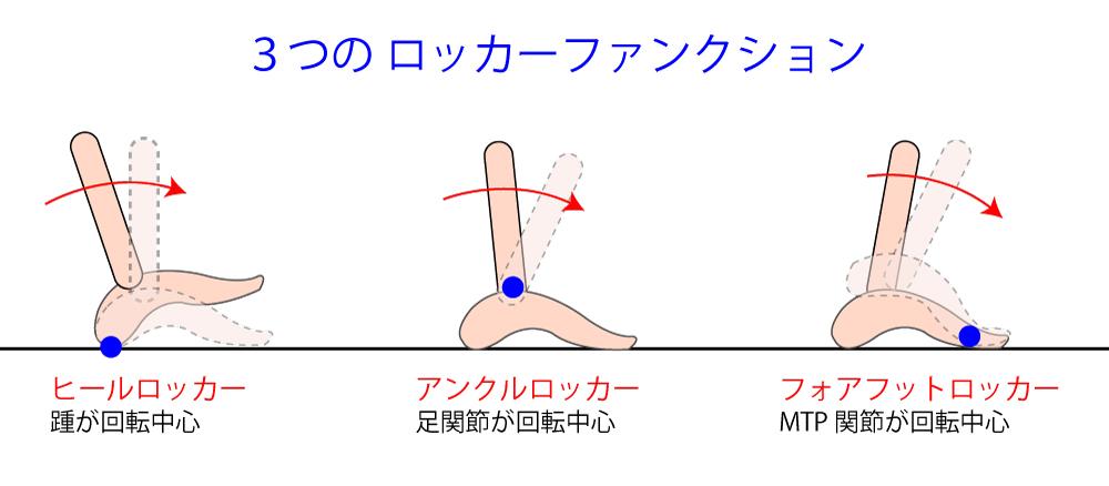 歩行に必要な『ロッカー機能(ロッカーファンクション)』の知識を分かり易く解説!