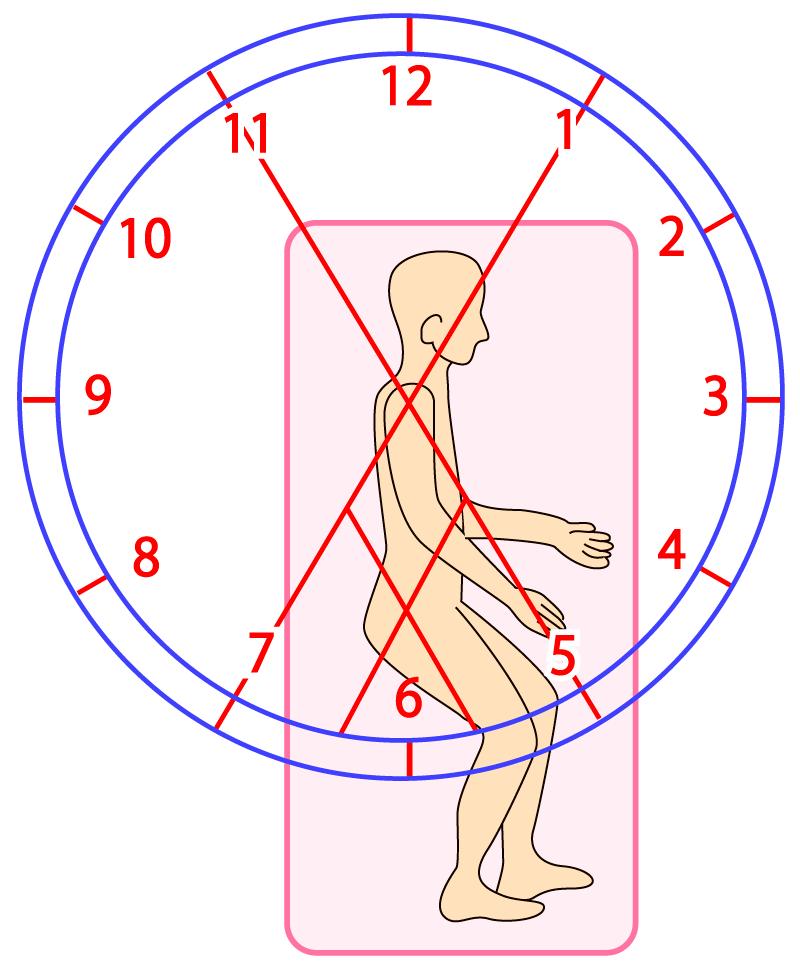 肩甲骨・骨盤のPNFパターンを動画で解説!