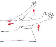 僧帽筋筋力トレーニング
